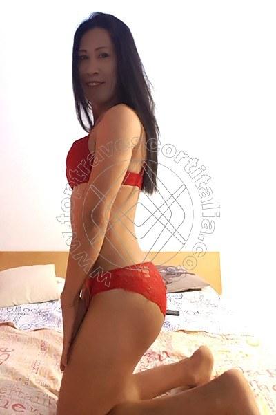 Paloma PRATO 3511580651